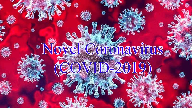 Novel Coronavirus pneumonia, COVID-2019