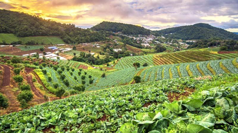 दिगो कृषि र प्राङ्गारिक खेति प्रणालीबारे जानकारी